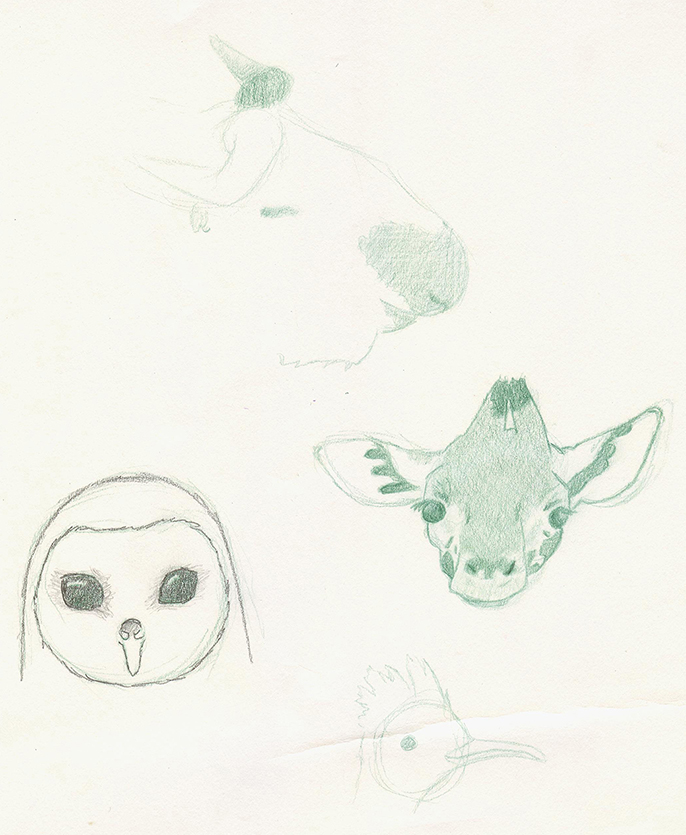Awesome Animals - image 4 - student project